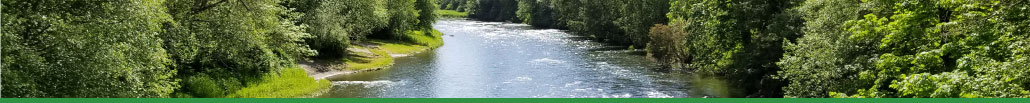 Picture of the Nisqually River