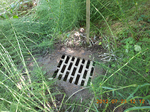 Photo of storm drain grate