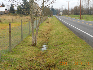 Photo of ditch type