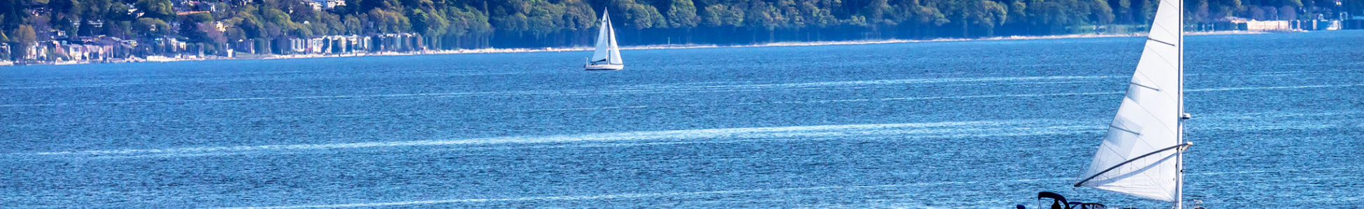 View of South Puget Sound and Capital Dome